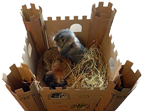 Smartbedz Cardboard Pet Castle 2