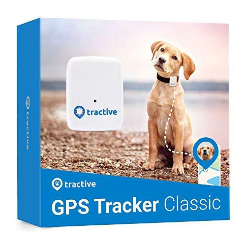 Rastreador Tractive GPS perros gatos - resistente