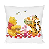 Winnie the Pooh and piggy Pillow