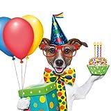"""'Biglietto di auguri o invito per compleanno con cane: Chico–il Party animale divertente """""""