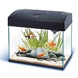 Nano-Komplett-Aquarium 20L,kratzfestes Glas,Filter/Pumpe u.Beleuchtung in der Abdeckung