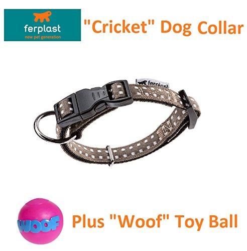 Ferplast Cricket CF25/70 48–70 cm Collier de chien Gris et Woof jouet pour chien Balle