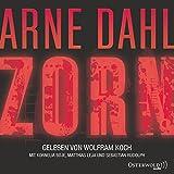 Zorn: 7 CDs (Opcop-Gruppe, Band 2)