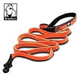 TrueLove TLL2271Outdoor Trainings-Hundeleine, Sehr Robust, Gepolstert, Freihändig, Zwei Hunde an einer Leine
