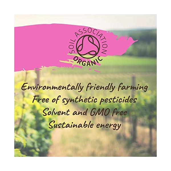 Naissance Aceite Vegetal de Ricino BIO 60ml – 100% puro, prensado en frío, certificado ecológico, vegano, sin hexano y…