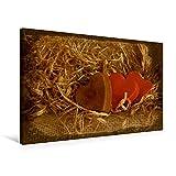 Premium Textil-Leinwand 75 cm x 50 cm quer, Drei Herzen | Wandbild, Bild auf Keilrahmen, Fertigbild auf echter Leinwand, Leinwanddruck: Geschenk zum Fest (CALVENDO Hobbys)