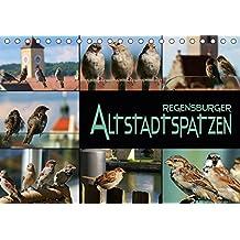 Regensburger Altstadtspatzen (Tischkalender 2018 DIN A5 quer): Spatzen abgelichtet in einer historischen Stadt (Monatskalender, 14 Seiten ) (CALVENDO Tiere)