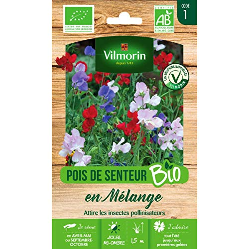 Vilmorin Sachet graines Pois de Senteur en mélange Bio - Lathyrus odoratus