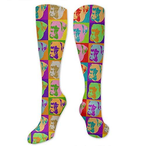 YudoHong Vintage Boxer Dog Socks Colorful Fun Sport Running Stockings for Men & Women Athletic Socks -