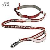 Jogging-Hunde-Leine Sport | reflektierend, mit elastischem flexi Gurt | Kein Klackern durch verstärkte Faser Schlaufe | Bauchgurt zum Joggen | Handfrei-Leine (Rot)