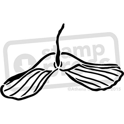 A3 'Sycamore Baumsamen' Wandschablone / Vorlage (WS00019602)