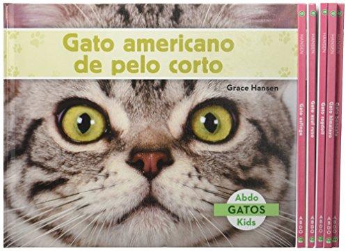 Gatos (Cats Set 2) (Spanish Version) (Set) por Grace Hansen