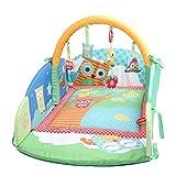 Labebe - Eulen Reisebett für Babys Spieldecke mit Zaun und Eulen-Spielbogen