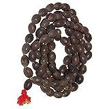 Salvus App SOLUTIONS Lotus Seed Original Kamal Gatta Prayer Rosary Japamala - Lakshmi Puja