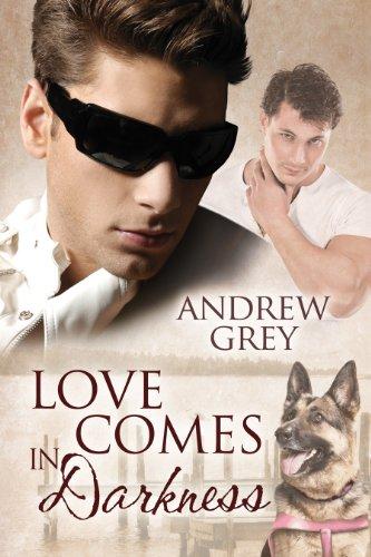 Love Comes in Darkness (Senses Series Book 2) (English Edition)