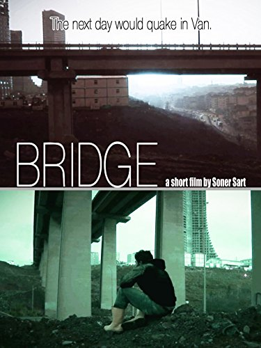 Bridge Cover