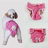 Dealglad® Culotte menstruelle lavable pour animal domestique