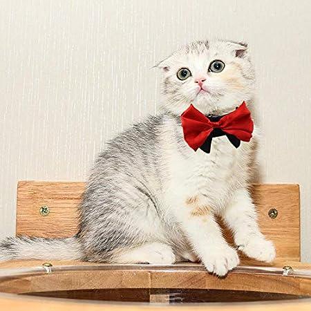 Hearthrousy Pet Halsband Hund Krawatte Fliege für Haustiere Zubehör Einstellbar Katzen Fliege Formelle Halsband Halsketten Bowknot Kostüm für Hochzeit Party