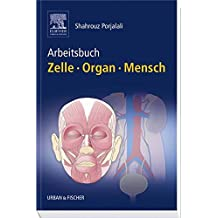 Arbeitsbuch Zelle Organ Mensch