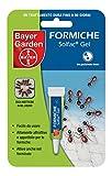 Bayer Gel Ameisen SOLFAC Stück 1Stk.
