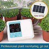 Carica di energia solare intelligente Dispositivo automatico di irrigazione,Gocce di piante succulente Strumento di irrigazione per Giardini, Balconi, cesti Pensili, Interni ed Esterni, Piante in Vaso