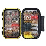 120PCS Fly Tying Material Fly Fishing Flies, Assorted Trout Fly Fishing Lure with Double Side Waterproof Pocketed Fly Box