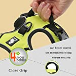 fiE FIT INTO EVERYWAY Range Of Front Side No Pull Dog Harness Outdoor Adventure 3M Reflective Pet Vest with Handle… 15