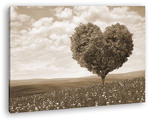 Romantischer Baum in Herzform Format: 100x70 Effekt: Sepia als Leinwandbild, Motiv fertig gerahmt...