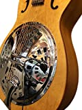 """THE FEATHER\"" REGAL RESONATOR GUITAR PICKUP with FLEXIBLE MICRO-GOOSE NECK by Myers Pickups ~ See it in ACTION! Copy and paste: myerspickups.com"