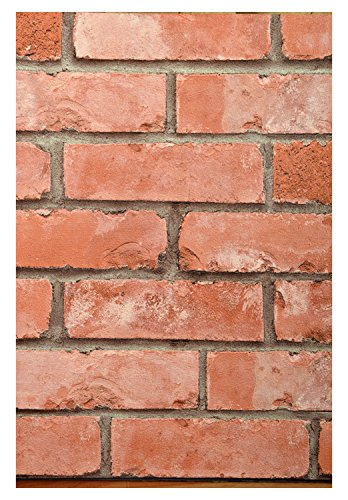 Assamble 3D collections Bricks Pattern Wallpaper (Red)