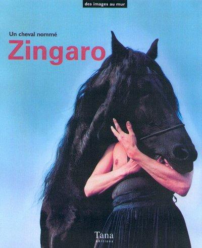 Coffret Zingaro le cheval