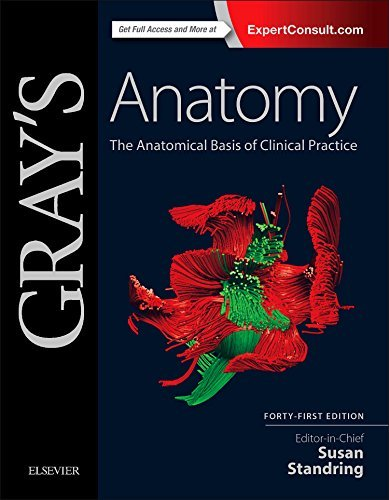 Gray's Anatomy: The Anatomical Basis of Clinical Practice, 41e by Standring PhD DSc, Susan (October 1, 2015) Hardcover