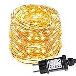 LE Stringa Luminosa per Decorazione Feste Natale, 100 LED in Rame Impermeabile IP65 Flessibile, Luce Bianca Calda, 10 mt