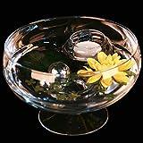 Runde Glas-Schale Roxy 75 Höhe 11cm ø 17cm. Flache Glasschale auf Fuß mit Dekoration Seerose gelb Deko-Schale von Glaskönig