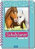 Schulplaner Pferde 2018/2019 - Schülerplaner, Schülerkalender: Timer mit Glitzer-Cover und farbigen Innenseiten