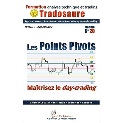 Les Points Pivots : maîtrisez le day-trading: Ebook + Vidéo exclusive (Formation à l'analyse technique t. 20)
