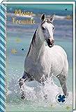 Freundebuch – Pferdefreunde – Pferd am Meer