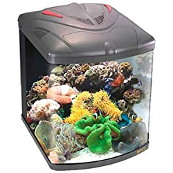 Boyu tl-450–Marina pequeño Nano acuario Fish Tank, 58L)