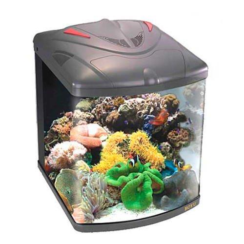 Boyu TL-450Marine klein Nano Aquarium Fisch Tank, 58Liter.