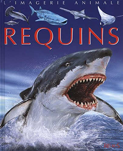Les requins par Cathy Franco