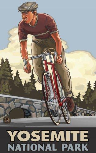 Northwest Art Mall - National Park Downhill Biker Flache Artwork von Paul A. Lanquist, 28 x 43 cm Downhill Parka