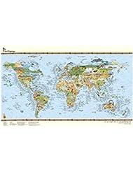 Surf Maps Carte du monde du surf