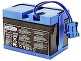 PEG Perego - MSVG0602 - Accessoire véhicule - Batterie 12 Volts 12 Ah