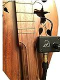 microphone Cherry Dulcimer avec micro-goose Flexible cou de Myers Pickups ~ voir en action?. Copie et Copier-coller?: myerspickups. com