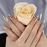 ArtPlus Diamond Fake Nails Kit Stilleto Bridal Silver Glitter with Crystal Full Cover with Glue 24pcs False Nails