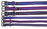 Amesbichler Hundehalsband Electra Choice aus Nylon 1,6 cm breit, 38 cm lang, Spark | Halsband für Hunde | Halsband Hund