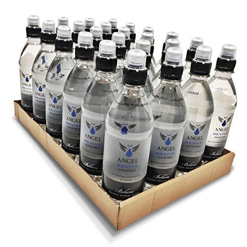 Angel Revive Natural Alkaline Water & Electrolytes Sports Cap Bottles 500ml (Pack of 24)