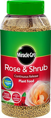 miracle-gro-rose-strauch-kontinuierliche-freisetzung-plant-food-1-kg-shaker-glas