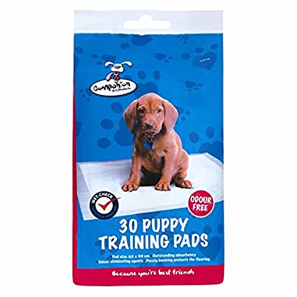Companion Puppy Dog Wee Wee Training Pads Odor Free Plastic Backed Excellent Quality, 30 Pads 1