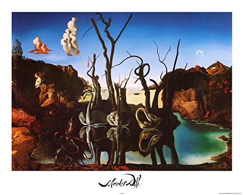 Salvador Dali Swans Reflecting Elephants White Border Art Print Poster Mini Poster 20 x 16in by iSi - Swans Reflecting Elephants Von Dali
